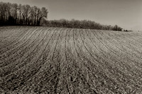 Ploughed Field - Nanteuil, France